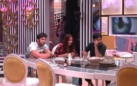 Bigg Boss 13: Baby, do you want Bhindi? Show gets its first love triangle