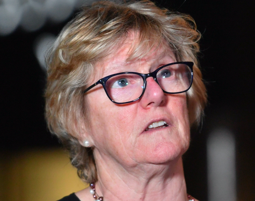 Professor Dame Sally Davies said that people may die as a result of medical shortages (PA)