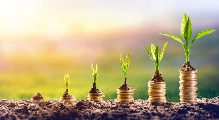 coins and plants growting up from the ground to represent growth stocks to buy