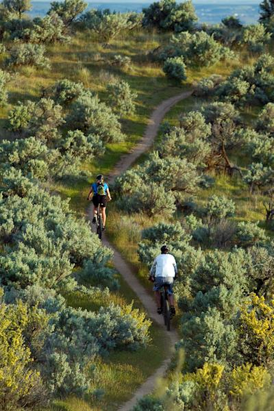 This 2010 photo provided by Boise Parks & Recreation shows bikers on the Polecat Loop in the Ridge to Rivers trail system in Boise, Idaho. The foothills are also a playground for hikers, runners, mountain bikers and bird-watchers. The city manages a network of more than 130 miles (210 kilometers) of trails and numerous access points, some just minutes from downtown. Even a short, moderate hike along any of the trails provides enough elevation to overlook the city, the valley and the Owyhee Mountains across the valley floor. (AP Photo/Boise Parks & Recreation, Aaron Beck)