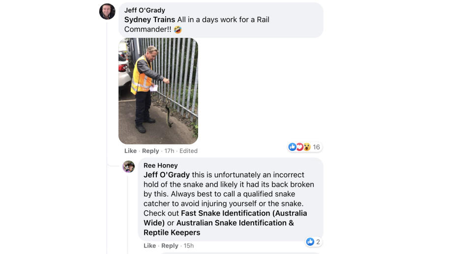 A screenshot of a Facebook comment which says the worker is holding the snake incorrectly. Source: Facebook