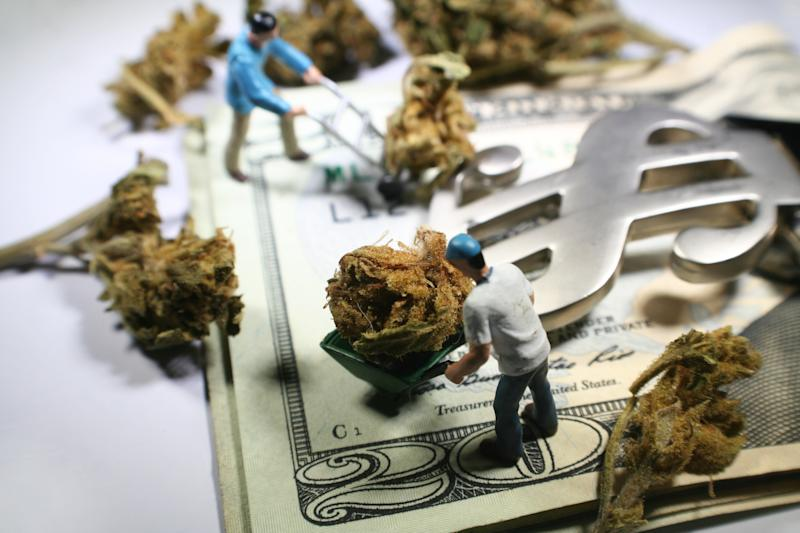 Tiny figures pushing wheelbarrows with marijuana buds on top of U.S. $20 bills with a money clasp shaped like a dollar sign