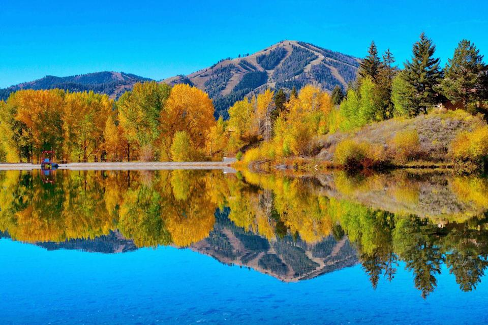 """<p><strong>Where to go:</strong> Sun Valley usually hosts skiers in the winter, but an autumn visit here or nearby <a href=""""https://www.fs.usda.gov/main/sawtooth/home"""" rel=""""nofollow noopener"""" target=""""_blank"""" data-ylk=""""slk:Sawtooth National Forest"""" class=""""link rapid-noclick-resp"""">Sawtooth National Forest</a> will impress adventure seekers with miles of hiking trails, scenic vistas, and orange and yellow aspen trees.</p><p><strong>When to go: </strong>Mid- or Late October</p><p><a class=""""link rapid-noclick-resp"""" href=""""https://go.redirectingat.com?id=74968X1596630&url=https%3A%2F%2Fwww.tripadvisor.com%2FHotels-g35614-Sun_Valley_Idaho-Hotels.html&sref=https%3A%2F%2Fwww.redbookmag.com%2Flife%2Fg34045856%2Ffall-colors%2F"""" rel=""""nofollow noopener"""" target=""""_blank"""" data-ylk=""""slk:FIND A HOTEL"""">FIND A HOTEL</a></p>"""