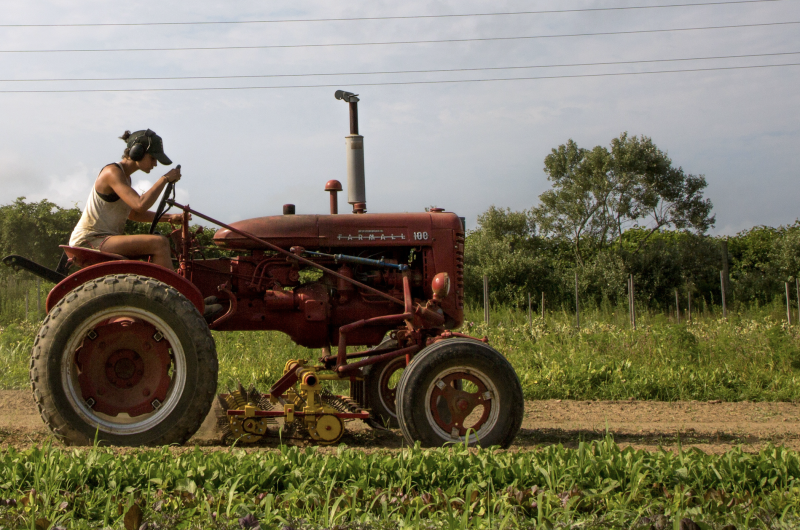 Farmer Isabel Milligan drives a tractor as she weeds and transplants crops on the farm in Amagansett, New York, U.S., July 11, 2019. (Photo: REUTERS/Lindsay Morris)