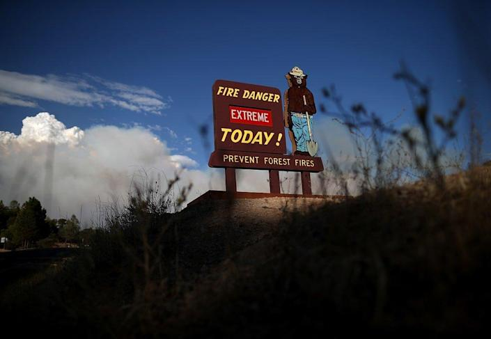 """<div class=""""inline-image__caption""""><p>Smokey Bear became the messenger for America's absolutist fire suppression ideology.</p></div> <div class=""""inline-image__credit"""">Justin Sullivan/Getty</div>"""