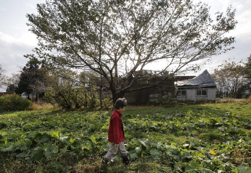 """In this Nov. 7, 2012 photo, farmer Keiko Kikukawa walks through her field where she just finished harvesting organic-grown rhubarbs  in Rokasho village, Aomori Prefecture, northern Japan. By hosting a high-tech facility that would convert spent fuel into a plutonium-uranium mix designed for the next generation of reactors, Rokkasho was supposed to provide fuel while minimizing nuclear waste storage problems. Those ambitions are falling apart because years of attempts to build a """"fast breeder"""" reactor, which would use the reprocessed fuel, appear to be ending in failure. """"It's so unfair that Rokkasho is stuck with the nuclear garbage from all over Japan,"""" Kikukawa said. """"And it's not going to go away even if the Rokkasho plant stops immediately. We're dumping it all onto our offsprings to take care of. It's so irresponsible."""" (AP Photo/Koji Sasahara)"""