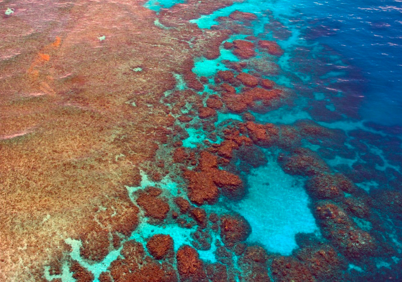 Great Barrier Reef, Australia. Credit: Pixabay