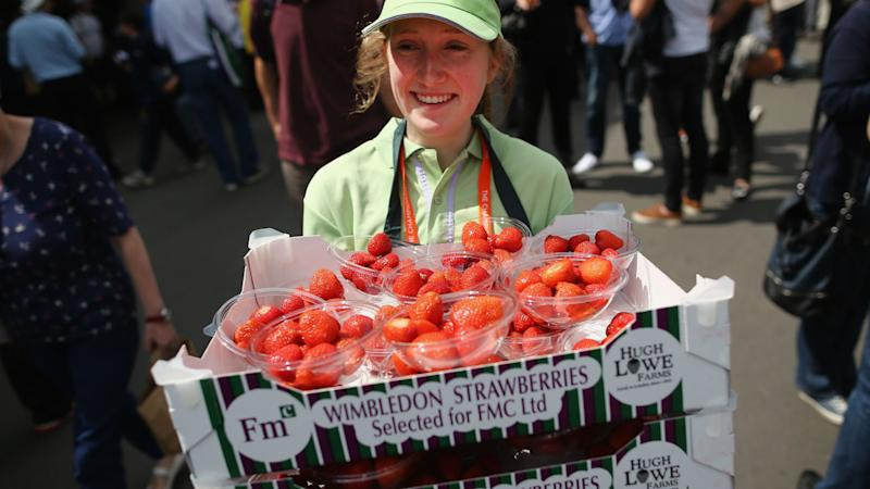 Wimbledon 2017: Strawberries galore and 54,250 balls at All England Club