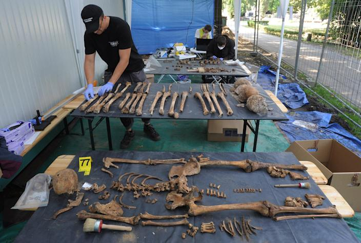 In this photo taken Tuesday, Aug. 21, 2012, a forensic worker sorts bones during works at the Powazki cemetery in Warsaw, Poland. More than a hundred skeletons of Poles murdered by the communist regime after World War II have been excavated from a secret mass grave on the edge of Warsaw's Powazki Military Cemetery during recent digging works. Historians hope to identify among them the remains of Witold Pilecki who volunteered to be an Auschwitz inmate to secretly gather evidence of atrocities there. (AP Photo/Alik Keplicz)