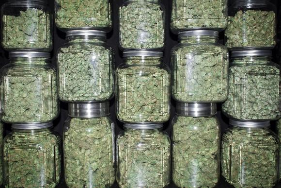 Jars of dried cannabis stacked on top of one another.