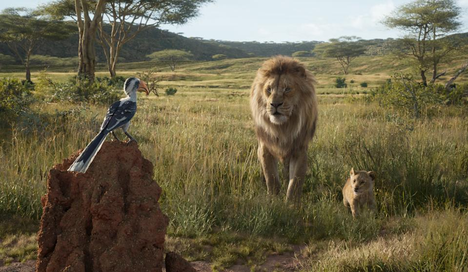 Mufasa leads Simba on a tour of the Pride Lands in <em>The Lion King</em>. (Photo: Disney Enterprises, Inc.)