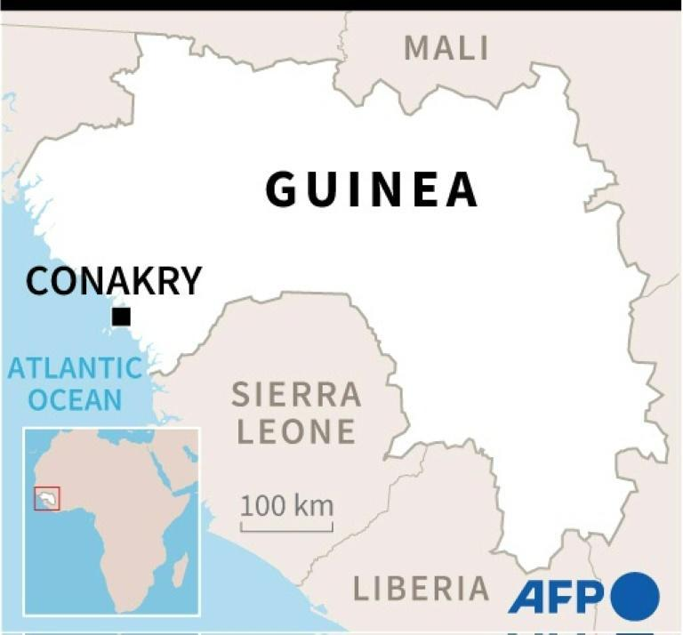 The tiny community of apes lives in a forest in the far southeastern corner of Guinea
