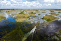 A hovering airboat is seen in Everglades National Park, Florida -- the largest wetland in the United States -- September 30, 2021 (AFP/CHANDAN KHANNA)