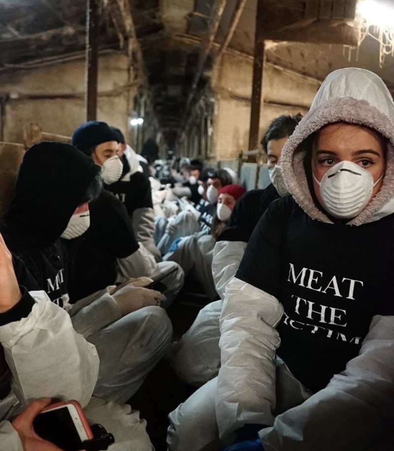Meat the Victims activists. Source: Instagram