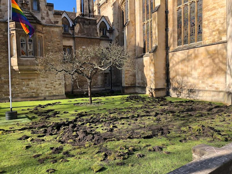 Trinity College lawn in Cambridge after Extinction Rebellion activists dug it up in an environmental protest: Tim Norman / PA Wire