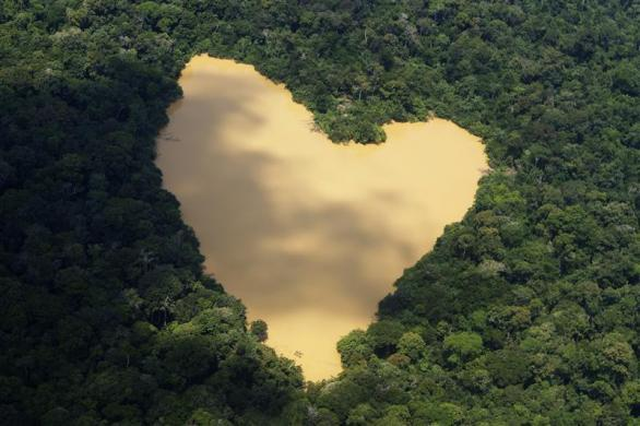 An aerial view of a natural lake fed by a spring in the Amazon River basin near Manaus, September 30, 2010.