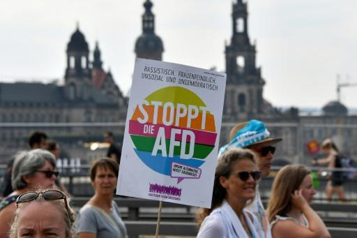 """A protester holding a sign reading """"stop the AfD"""" at the march in Dresden"""