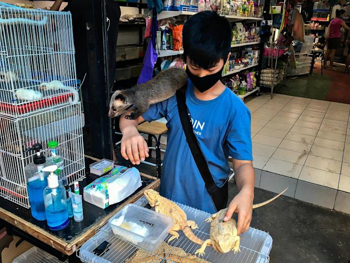 <p>A teenager with iquanas, badger and other animals in Chatuchak market, Bangkok</p> (C Thomsen)