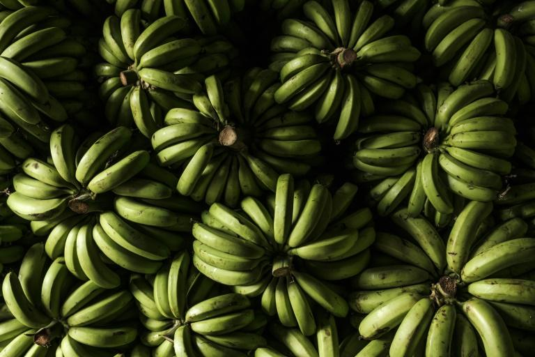 The cocaine was packed in bricks wrapped in metal foil and hidden inside a shipment of bananas