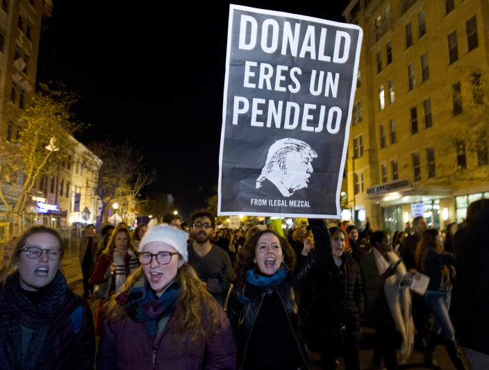 """<p>A demonstrator holds a sign as she and others protest during a march in downtown Washington in opposition of President-elect Donald Trump, on Saturday, Nov. 12, 2016. The sign reads in English, """"Donald, you're an idiot."""" ( AP Photo/Jose Luis Magana) </p>"""