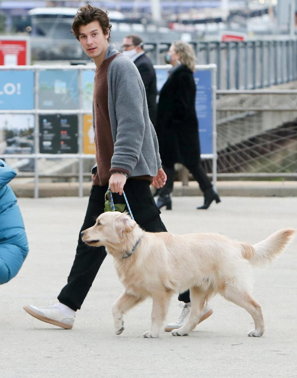 <p>Shawn Mendes takes his golden retriever for a walk in downtown Brooklyn on Monday.</p>