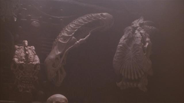 The Xenomorph skull mounted on the Predators' trophy wall was an Easter egg in <i>Predator 2</i> and the first clue the creatures could share a cinematic universe. (Photo: 20th Century Fox)