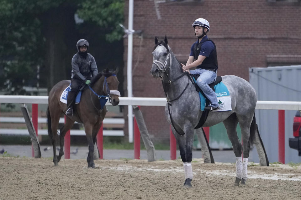Essential Quality, right, trains the day before the 153rd running of the Belmont Stakes horse race in Elmont, N.Y., Friday, June 4, 2021. (AP Photo/Seth Wenig)