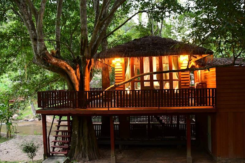 airbnb treehouse thailand