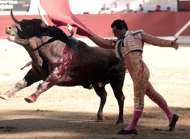 Fandino died in hospital on Saturday after being gored in the ribs by a bull, whose horn punctured his lung, at the Aire-sur-l'Adour bullfighting festival in the south of France