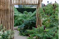 <p><strong>SANCTUARY GARDEN | Award: SILVER-GILT</strong></p><p>Designed by Thomas Hoblyn, this garden was inspired by the well-loved children's story by Frances Hodgson- Burnett. It's a contemporary interpretation of the journey to an enchanted, life-changing sanctuary.</p>