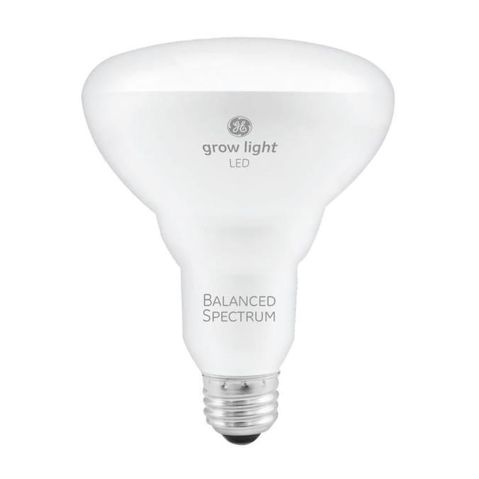 <p>Emitting a white light as opposed to a purple one, the <span>GE Grow Light LED Bulb</span> ($15) comes with a balanced light spectrum for seeds and cuttings. It has a high photosynthetic photon flux, which means it provides more light for photosynthesis and growth. </p>