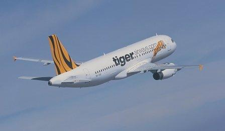 Tiger Singapore takes off with 30% balloon in traffic