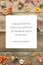 <p>I am grateful for what I am and have. My thanksgiving is perpetual.</p>