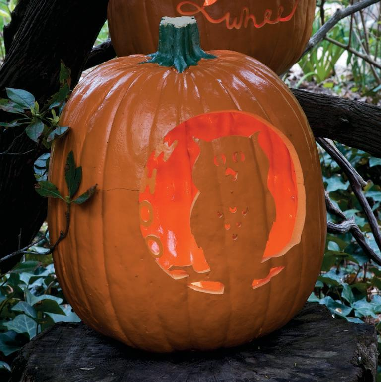 """<p>You'll want to pick a particularly plump and round pumpkin for <a href=""""https://www.womansday.com/home/crafts-projects/a28637613/whoo-is-the-wisest-pumpkin/"""" rel=""""nofollow noopener"""" target=""""_blank"""" data-ylk=""""slk:this carving idea"""" class=""""link rapid-noclick-resp"""">this carving idea</a>.</p><p><em><strong><a href=""""https://www.womansday.com/home/crafts-projects/a28637593/whoo-is-the-wisest-pumpkin-stencil/"""" rel=""""nofollow noopener"""" target=""""_blank"""" data-ylk=""""slk:Get the Hoo Is the Wisest Pumpkin stencil."""" class=""""link rapid-noclick-resp"""">Get the Hoo Is the Wisest Pumpkin stencil.</a></strong></em></p>"""