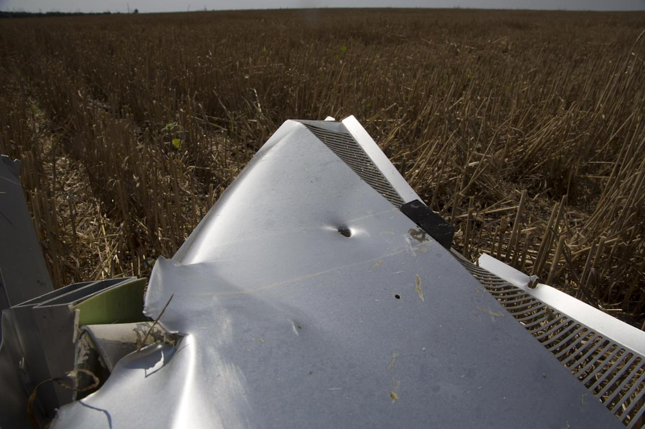 A piece of wreckage from the Malaysia Airlines jet downed over Ukraine is seen near Petropavlivka village, Donetsk region, eastern Ukraine Wednesday, July 23, 2014. Independent military analysts said Wednesday that the size, spread, shape and number of shrapnel impacts visible in an AP photograph of a piece of the wreckage all point to a missile system like the SA-11 Buk. (AP Photo/Dmitry Lovetsky)
