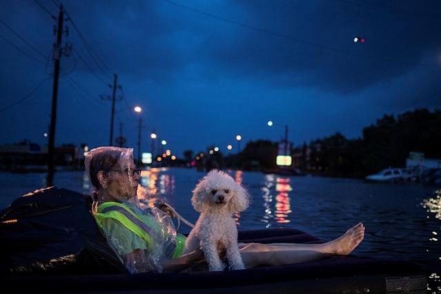 <p>A rescue helicopter hovers in the background as an elderly woman and her poodle use an air mattress to float above flood waters from Tropical Storm Harvey while waiting to be rescued from Scarsdale Boulevard in Houston, Texas, Aug. 27, 2017. (Photo: Adrees Latif/Reuters) </p>