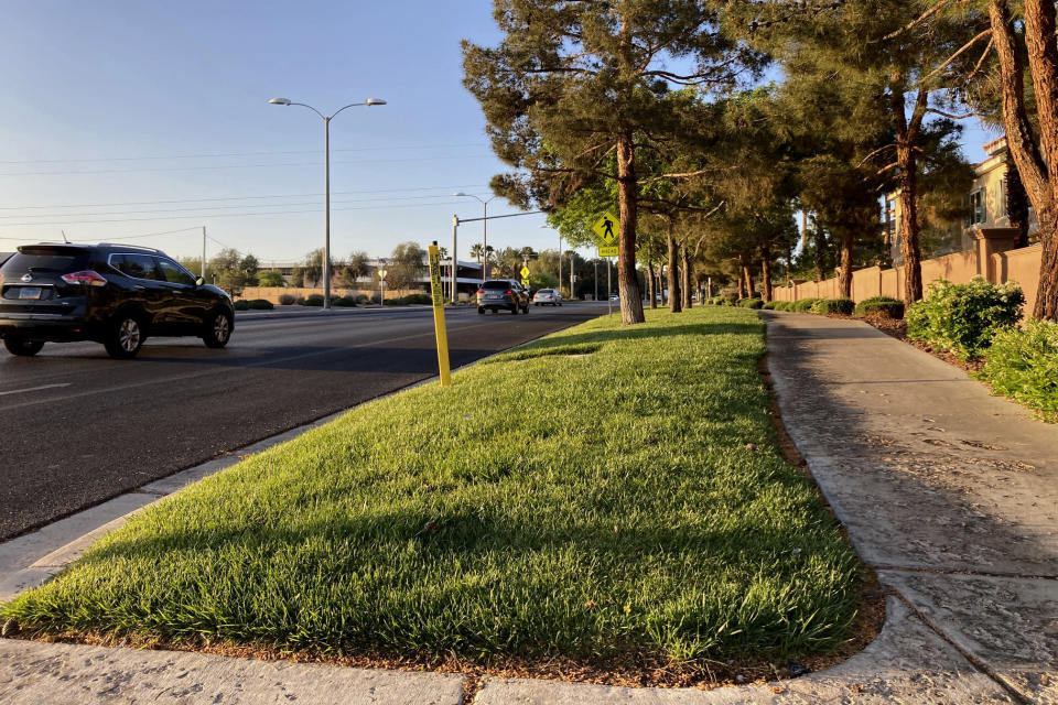 FILE - In this April 9, 2021, file photo, traffic passes a grassy landscape on Green Valley Parkway in suburban Henderson, Nev. Nevada Governor Steve Sisolak signed legislation on Friday, June 4 to make the state the first in the nation to ban certain kinds of grass. The measure will ban water users in southern Nevada from planting decorative grass in an effort to conserve water. (AP Photo/Ken Ritter, File)