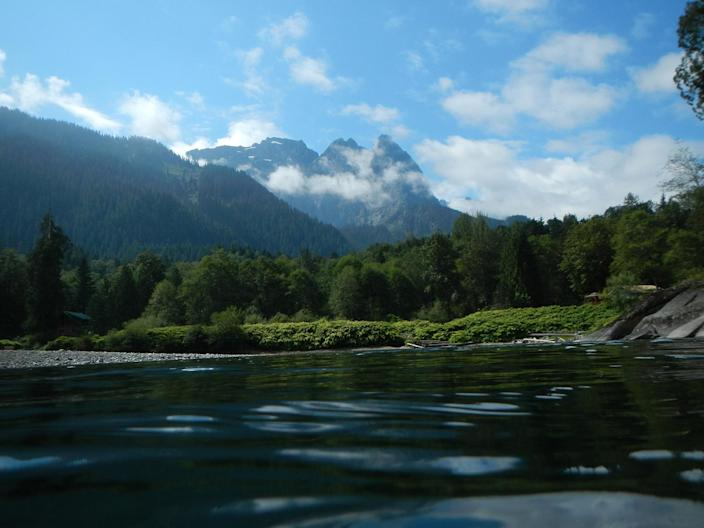 <p>View of the South Fork Skykomish River. (Photo: Thomas O'Keefe) </p>