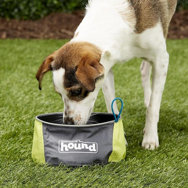 Outward Hound Port-A-Bowl Pet Bowl (Photo: Chewy)