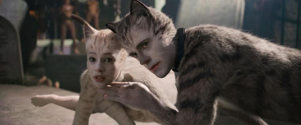 two of the Cats in the film