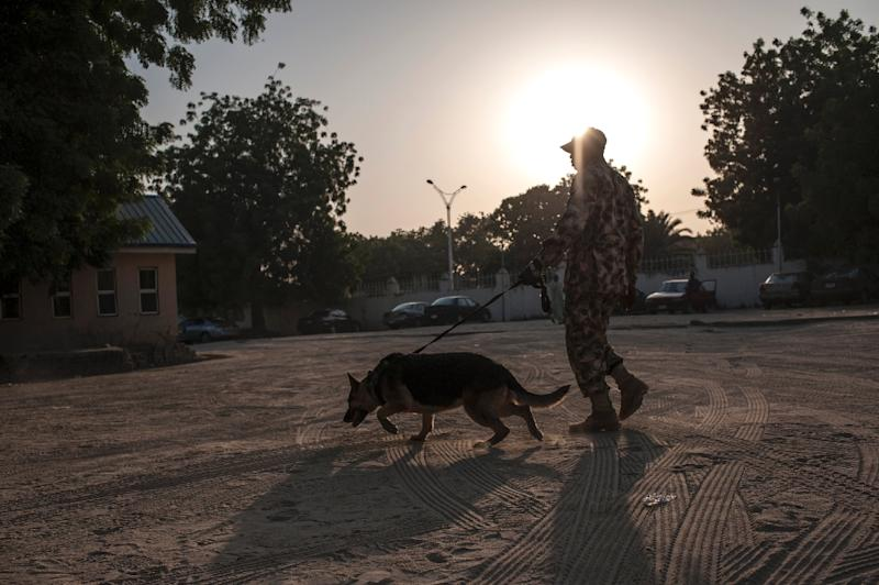 A Nigerian soldier with his sniffer dog patrols on January 18, 2017