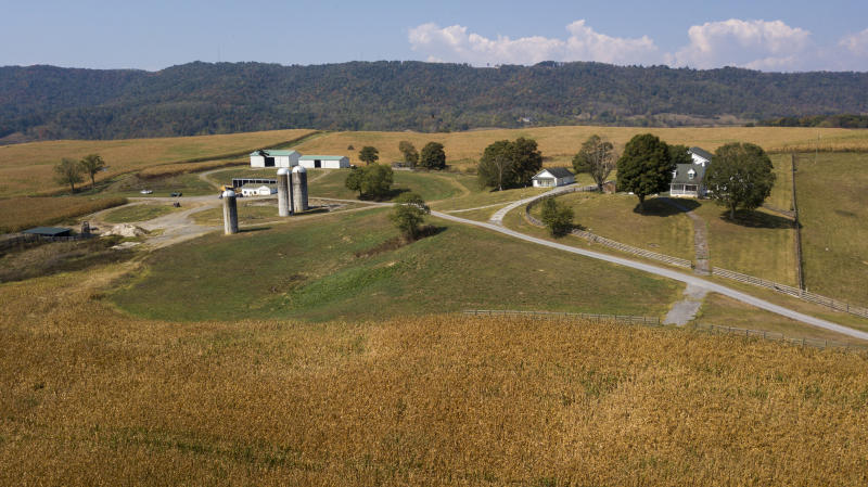 This Oct. 1, 2019 aerial photo shows farm buildings and a farm house surrounded by a crop of corn on a farm owned by the family of West Virginia Governor Jim Justice near Lewisburg, W.Va. Justice Farms of North Carolina raked in tens of thousands of taxpayer dollars under a subsidy program President Donald Trump set up to help farmers hurt by his trade war with China. (AP Photo/Steve Helber)