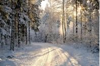 "<p>They don't call it ""the most wonderful time of the year"" for nothing! Here, we're sharing the all-time best winter quotes with you in the hopes that you'll be able to relish in the beauty and tranquility of the season. Whether you're looking for some inspiration for a thoughtful <a href=""https://www.countryliving.com/life/a24788448/christmas-instagram-captions/"" rel=""nofollow noopener"" target=""_blank"" data-ylk=""slk:Christmas Instagram caption"" class=""link rapid-noclick-resp"">Christmas Instagram caption</a>, <a href=""https://www.countryliving.com/life/entertainment/a30174282/winter-instagram-captions/"" rel=""nofollow noopener"" target=""_blank"" data-ylk=""slk:winter Instagram caption"" class=""link rapid-noclick-resp"">winter Instagram caption</a>, on the hunt for an original <a href=""https://www.countryliving.com/diy-crafts/how-to/g3872/christmas-card-ideas/"" rel=""nofollow noopener"" target=""_blank"" data-ylk=""slk:Christmas card"" class=""link rapid-noclick-resp"">Christmas card</a> message, or simply want to share one of these inspiring sayings with friends and family on your upcoming Polar Express train ride, there's bound to be something here that speaks to you. </p><p>Of course, you don't need a reason to appreciate the season. Showing our gratitude for Mother Nature is something we should do every day, regardless of the circumstances or time of year. Fr0m the profound winter quotes (""To appreciate the beauty of a snowflake, it is necessary to stand out in the cold,"" says Aristotle) to the funny winter quotes (take, for instance, ""A snowball in the face is surely the perfect beginning to a lasting friendship"" from <em>The Book Thief</em>) and a few classic holiday-inspired ones to read out loud at Christmas dinner, we've got a quote or winter saying for just about everyone. Should you need a little extra inspiration though, you might want to check out our very favorite <a href=""https://www.countryliving.com/life/g2819/christmas-quotes/"" rel=""nofollow noopener"" target=""_blank"" data-ylk=""slk:Christmas quotes"" class=""link rapid-noclick-resp"">Christmas quotes</a>!</p>"