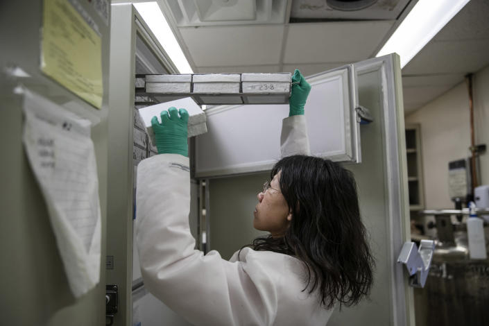 Claire Liu prepares cell samples that will be infected with coronavirus at The Icahn School of Medicine at Mount Sinai, in New York, March 14, 2020. (Victor J. Blue/The New York Times)