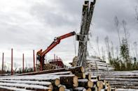 Environmental groups are sceptical of claims that all felled forests are replanted, and are calling for tighter regulation of the industry.