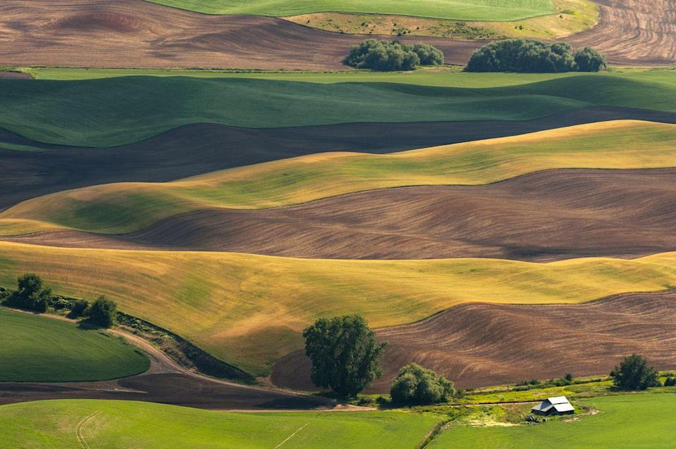 <p>This multi-colored farmland looks like a painting. </p>
