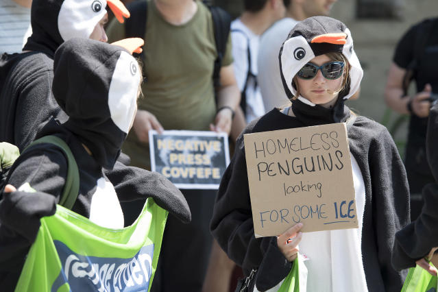 """<p>Activists of Greenpeace dressed up as penguins hold a sign """"Homeless penguins looking for some ice"""" as they protest against the decision of the US government to exit the Paris climate deal in front of the US Embassy in Bern, Switzerland, Friday, June 2 2017. (Anthony Anex/Keystone via AP) </p>"""