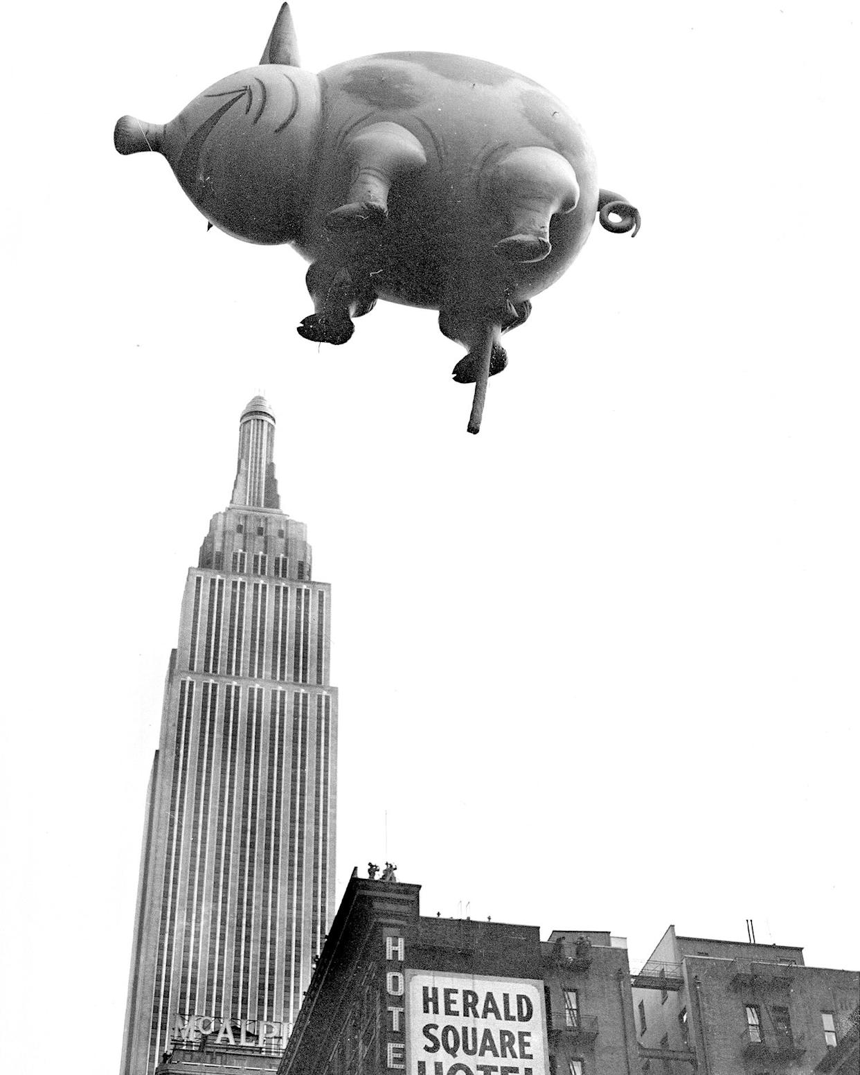 This blind pig is not a speakeasy. He's coming from the 1932 Macy's Thanksgiving Day Parade. And don't let that perspective fool you. Mr. Pig is not really over Empire State Building. (Photo: New York Daily News Archive via Getty Images)