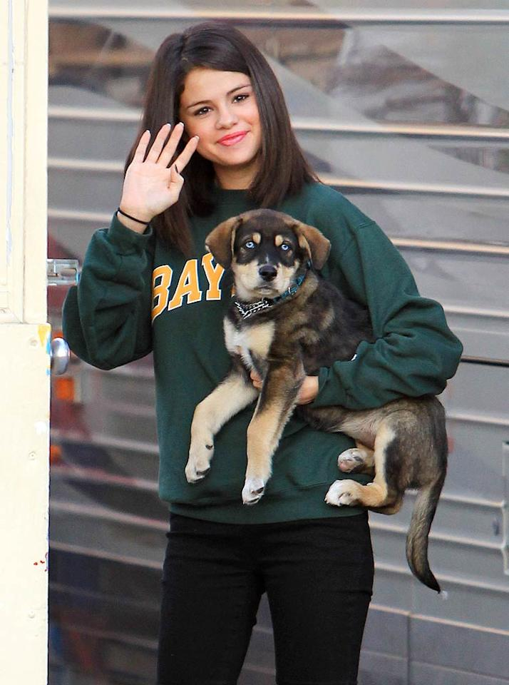 Selena Gomez and boyfriend Justin Bieber must be getting serious. The couple just adopted a new puppy together! Selena cuddled up with her precious pooch, named Baylor, before her concert in London, Ontario, Canada. The couple picked up the pup at an animal rescue in Winnipeg. (10/24/2011)