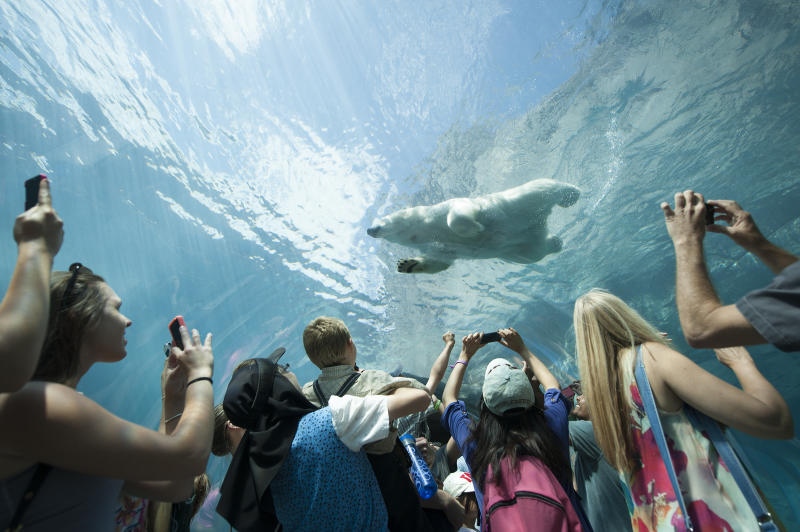 Assiniboine Park Zoo - Journey to Churchill (Travel Manitoba)